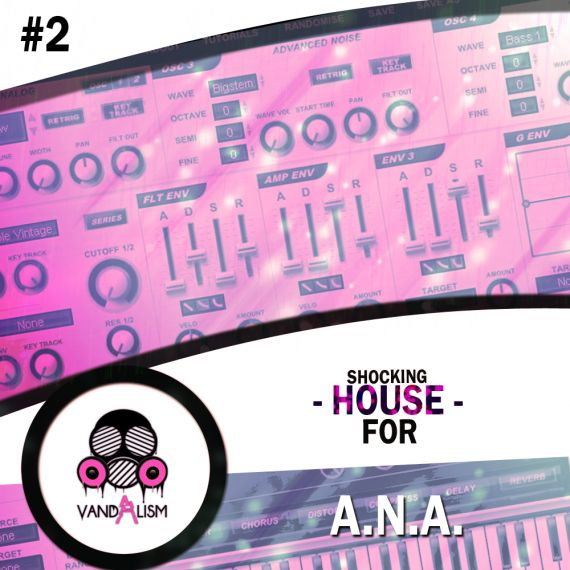 Shocking House For ANA 2